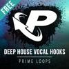 ► FREE DEEP HOUSE VOCAL HOOKS!!