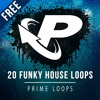 ► 20 FREE FUNKY HOUSE LOOPS!!! [40mb]