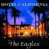 The Eagles - Hotel California (Acoustic version)