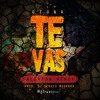 Ozuna - Te Vas (Salsaton Remix) (Prod. Dj Sergio Mudarra) [FlowMusic International]