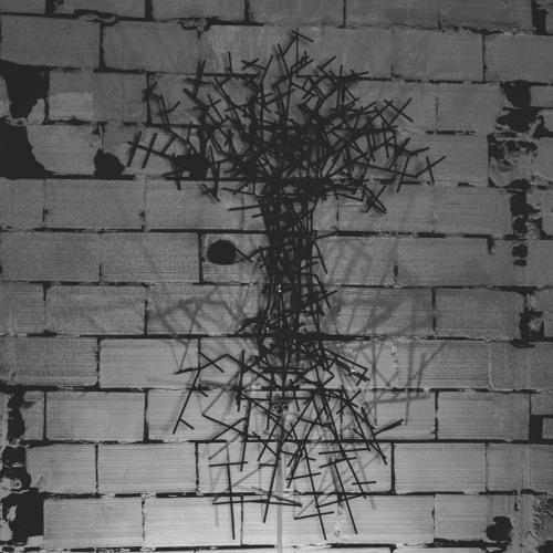 Birth Of A Dead Tree - Michele Abolaffio