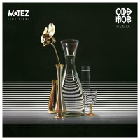 Motez - The Vibe feat. Scrufizzer (Odd Mob Remix)