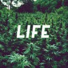 Life Is Good - (Produced By Jay Scaletta)