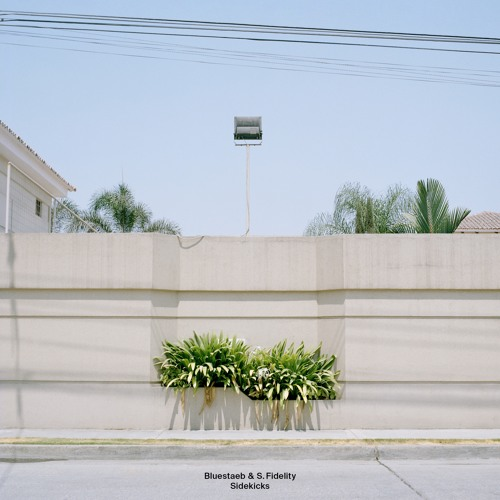 Bluestaeb & S. Fidelity - Sidekicks EP