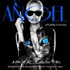 ANGEL / Dedicated To Angelight,Sean,Traci & 7cats ! JAZZ Flavor !