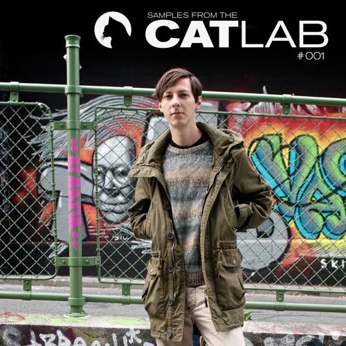 "CATLAB Samples #001 // ""Lana Del Rey - Videogames"" _ Mekoor Remix"