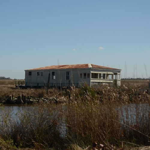 Rebuilding Louisiana's Disappearing Delta