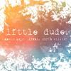 LITTLE DUDE (feat Chris Willis)