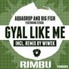 Aquadrop & Big Fish Ft. Stush - Gyal Like Me (Eduardo Faria Remix)