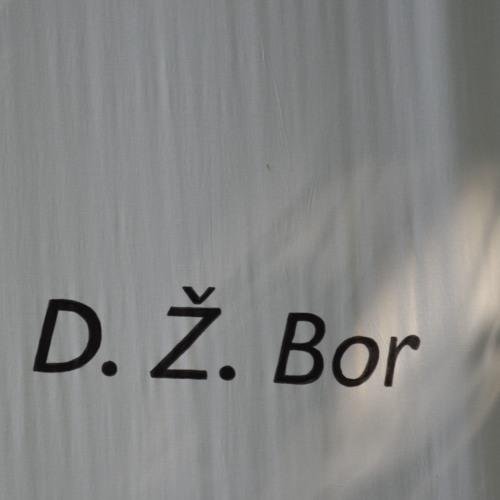 D. Ž. Bor: Šalamounova pečeť