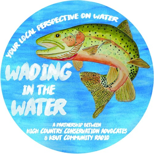 Wading in the Water #35: The Coal Creek Watershed