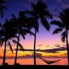 island summer vibes