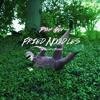 Fried Noodles (Moonside Remix)