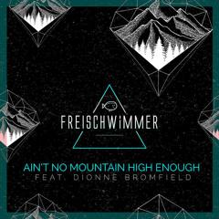 Freischwimmer - Ain't No Mountain High Enough (Luca Schreiner Remix)
