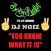 Boom Bullet x DJ Noiz - You Know What It Is