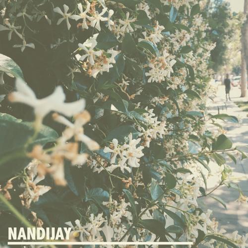 NandiJay