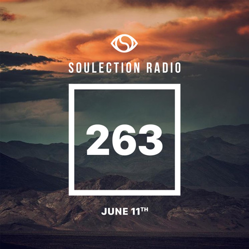 Soulection Radio Show #263