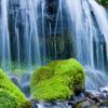 Deep Springs - (Original)