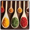 GJB 184 Spice