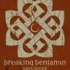 Breaking Benjamin-Angels Fall(Acoustic)