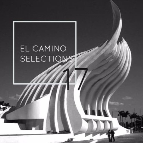 AYES COLD X EL CAMINO TRAVEL // SELECTIONS CONTINUED 17
