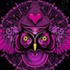 Download EDC Zow Night Owl (Mark Zow Live Set) Mp3
