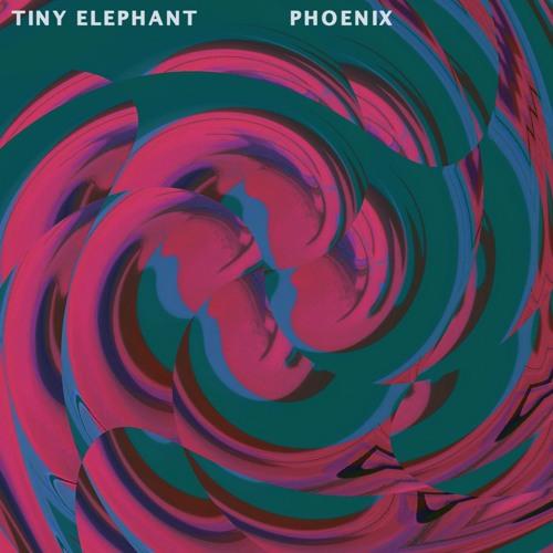 Tiny Elephant - Phoenix