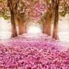 You must believe in spring (Michel Legrand/ Marylin & Alan Bergman)