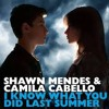Shawn Mendes & Camila Cabello (Jay Trazz & Marie Digby Cover )