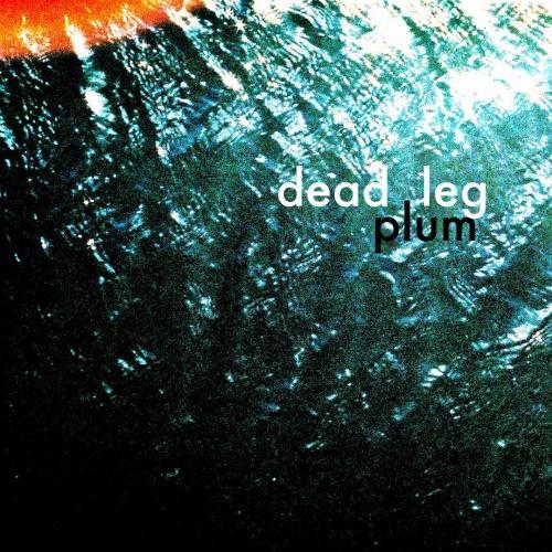 Dead Leg
