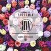 Buzzzmix Vol. 28 - Bronze Whale