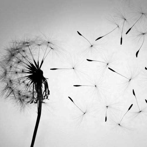 SWEATSON KLANK - EMPTY YOUR SOUL