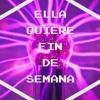 Lekan El Poeta Ft Master Boy & Cuarto Contacto -Ella Quiere Fin De Semana (Wicked B0yz Mashup)