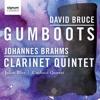 Brahms - Clarinet Quintet In B Minor, Op. 115  II. Adagio (Clip)