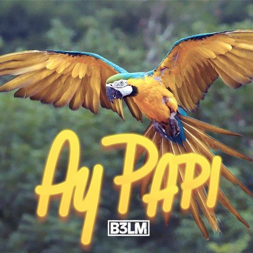 B3LM - Ay Papi (Original Mix)