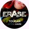 Toucan - Something