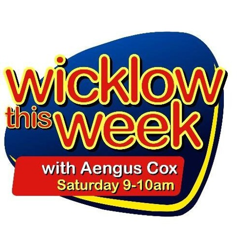Week 2 (18 June): Next 3 interviews with firms shortlisted for Wicklow's brightest start-up