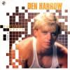 Den Harro - Broken Radio (Rem
