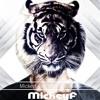 Download Mickeyf - Edm Mix Festivals - Episode 01 Final Mp3