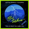 This Is What You Came For - Rihanna (Bri Roberts Mix)