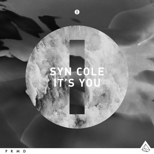 Syn Cole It's You (DJSNR Remix)