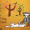 Wolf Dog Tales 4. El Lobo Salvaje De Gubbio Student