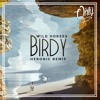 Birdy - Wild Horses (Heronic Remix) - Click Buy for Free Download