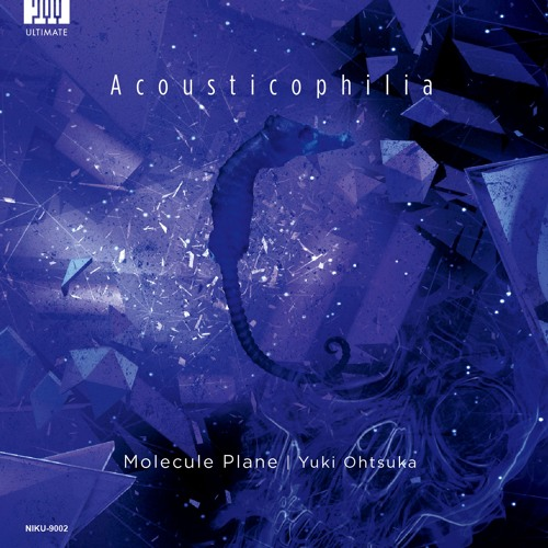 Molecule Plane - Acousticophilia (XFD)