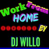 Fifth Harmony Work From Home Remix Dj Willo Mp3