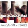 The Missing Link (collaboration Soundshift+Zandra)