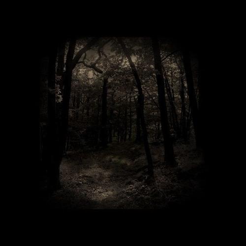 Anja Zaube - Ravenous [NMRS002 | Exclusive Streaming]