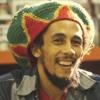 Bob Marley - Iron Lion Zion (12 Inch Mix)