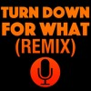 Turn Down For What (Marimba Remix)