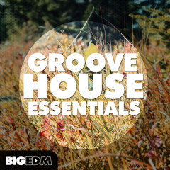 Groove House Essentials [12 Axtone & Protocol Style Kits, 250 Samples, Presets] Beatport TOP 10!